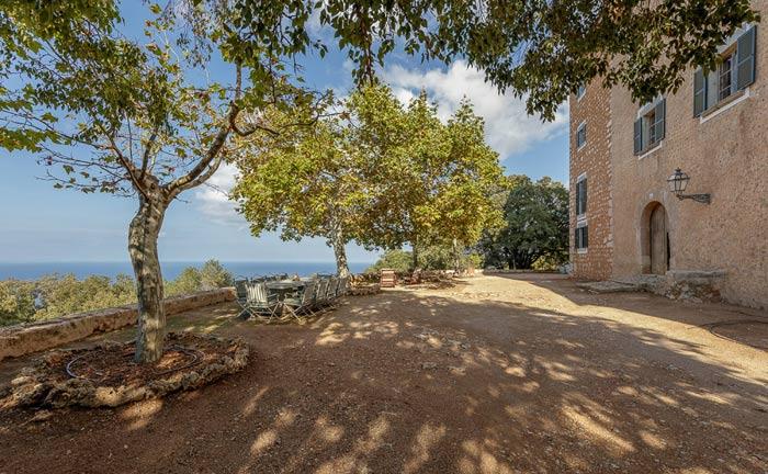 Auf dem Landgut Es Rafal de Planicia befinden sich mehr als 1.000 Olivenbäume – einige sind älter als 1.000 Jahre.