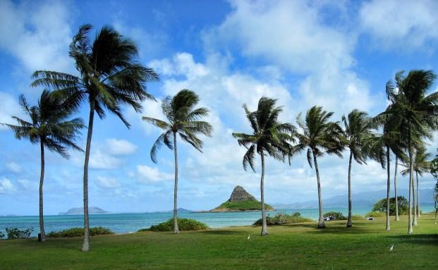 Die Inselkette Hawaii gehört zum polynesischen Kulturraum. (Foto: Michaela Schöllhorn/pixelio.de)