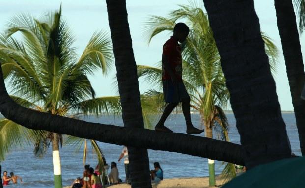 Der Balance-Akt eines Jungen auf einem Palmenstamm in der Karibik ist Sinnbild für die dortige Hedgefonds-Industrie|© Bloomberg