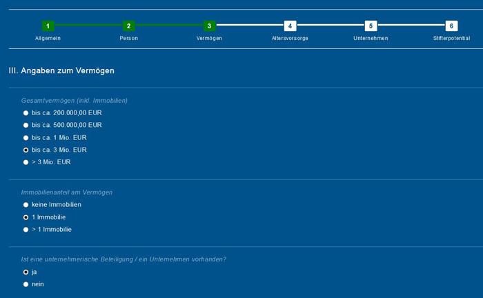 So sieht beispielhaft die Webanwendung der Deutschen Stiftungsagentur zum Fragepunkt Vermögen aus