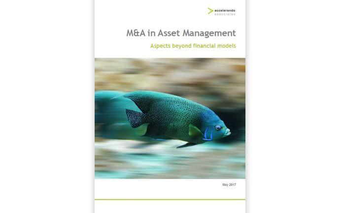 Nimmt die Zukunft der Asset-Management-Industrie unter die Lupe: M&A-Studie von Accelerando Associates