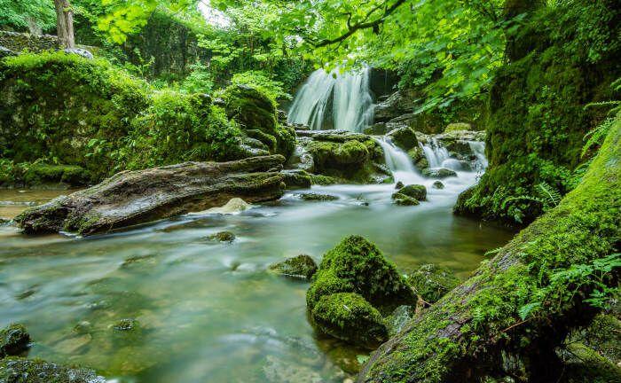 Urwüchsige Landschaften sind ein Symbol für Nachhaltigkeit.
