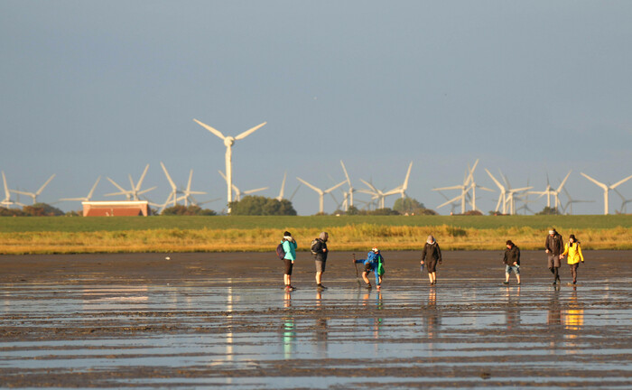 Wattwandern in einem vom Klimawandel bedrohten Lebensraum: Verantwortungsbewusstes Investieren wird immer dringender.|© imago images / blickwinkel