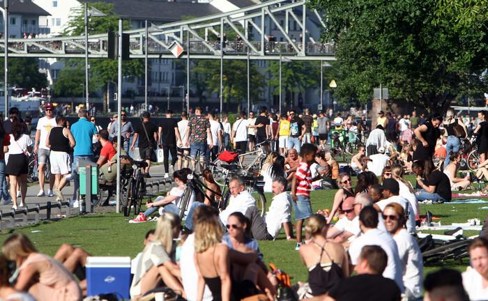 Park am Mainufer in Frankfurt: Obwohl fast drei Viertel der Deutschen in den kommenden Jahren steigende Aktienkurse erwarten, hält die Mehrzeit an ihrer gewohnten Geldanlage fest.