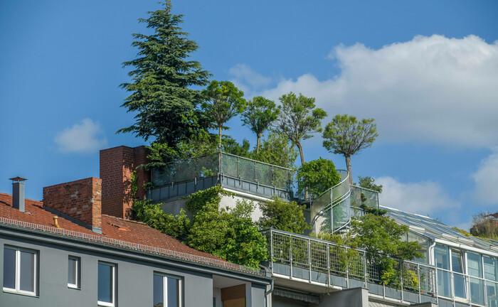 Ganz besondere Ausbaustufe von Nachhaltigkeit bei Immobilien: Ein Dachgarten auf einem Wohnhaus im Berliner Stadtteil Charlottenburg. |© imago images / Joko