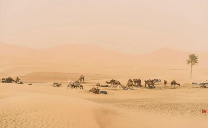 Touristenort Merzouga in Marokko: Anleihen des nordafrikanischen Landes bringen derzeit so niedrige Renditen wie nie zuvor.|© imago images / Westend61