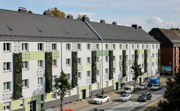 Grüne Fassaden an einem frisch sanierten Wohnhaus in Essen