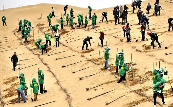 Aufforstung der Kubiqui-Wüste in der Inneren Mongolei