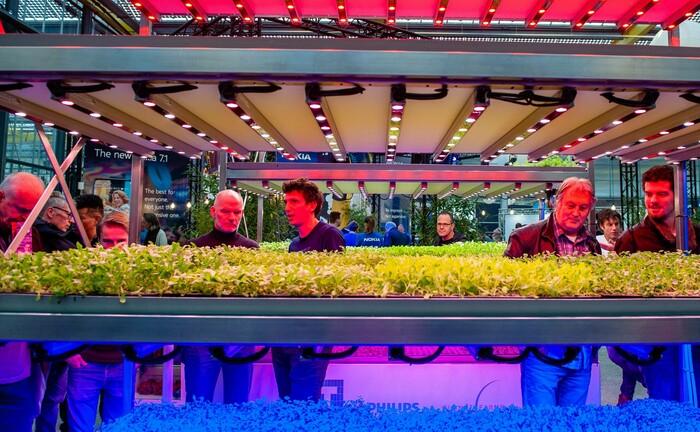 Vertikaler Garten in den Niederlanden
