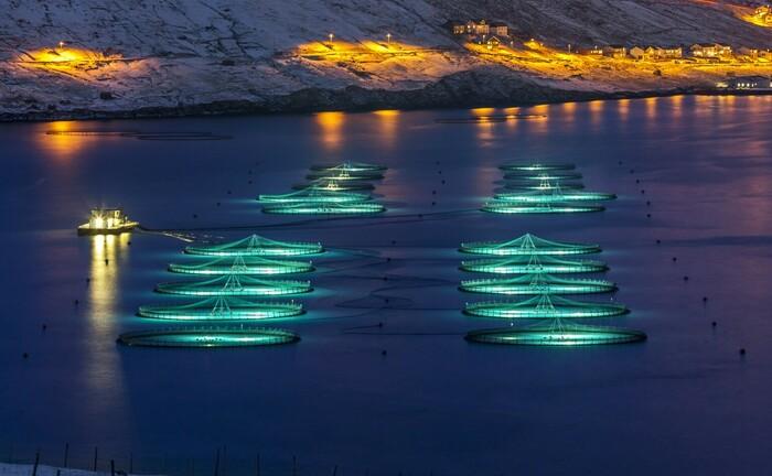 Fischzucht-Anlagen von Bakkafrost
