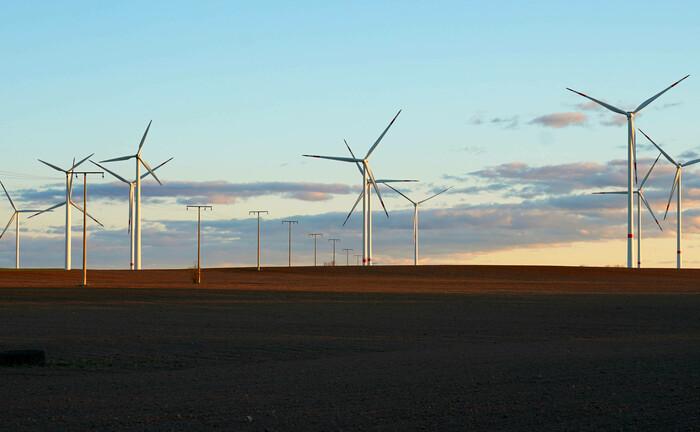 Ein Windpark in Brandenburg